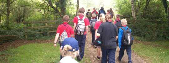 Scouts Hiking